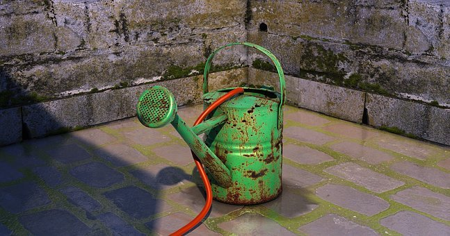 Watering Can, Water Jug, Model, Metallic