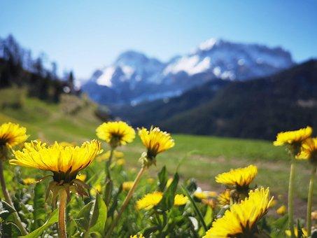 Mountain, Alps, Dolomites, Nature, Landscape, Mountains
