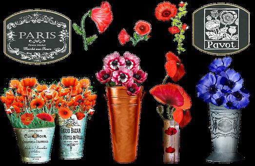 French Flower Market, Poppy
