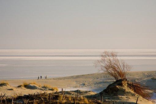 The Curonian Lagoon, Baltika, Ice, Winter, Dunes
