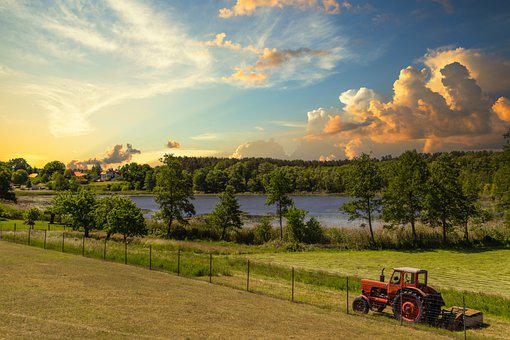 Field, Arable, Tractor, Red, Lake, Water, Houses