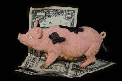 Greedy, Pig, Money, Cash, Dollars, Backlight, Toy