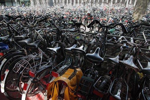 Bicycle, Bike, Bikes, Biking, City, Crowded, Cycle