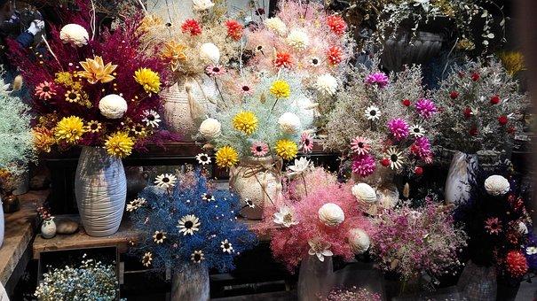 Starry Sky, Flowers, Jiangnan, Dry, Bouquet