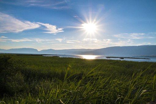 Nature, Landscape, Summer, Blue Sky, Lake, Field
