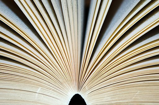 Open, Book, Page, Pages, Books, Adventure, Knowledge