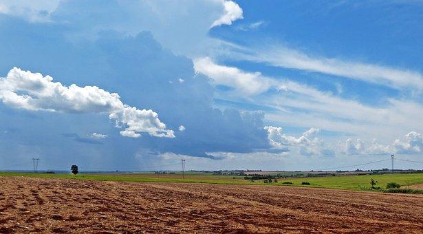 Sky, Cloud, Field, Plantation, Clouds, Blue Sky, Day