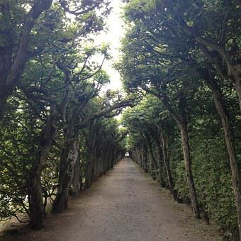 Portico, Hedge, Hedge Accounting, Gloomy, Hermitage