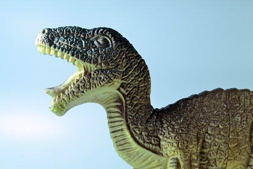 Dinosaur, Tyrannosaurus, Toy, Animal, Jurassic
