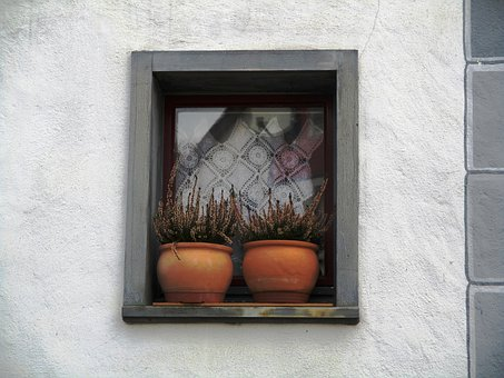 House, Window, Hauptwil, With Plant Sims, Clay Pots