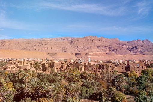 Morocco, Africa, City, Settlement, Oasis, Palm Trees