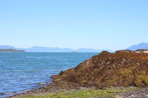 Coastline, Shoreline, Ocean, Beach, Coast, Shore, Water