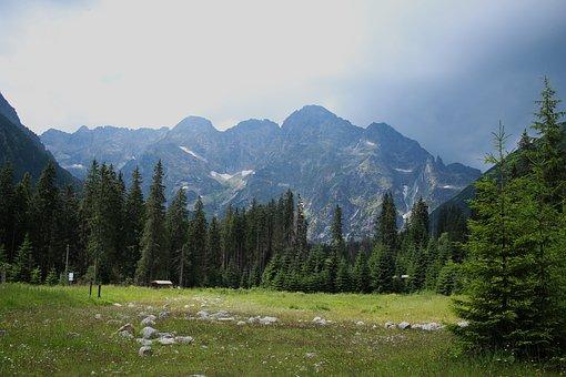 Tatry, Mountains, Landscape, Nature