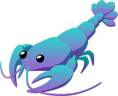 Cancer, Arthropoda, Crustaceans, Animal