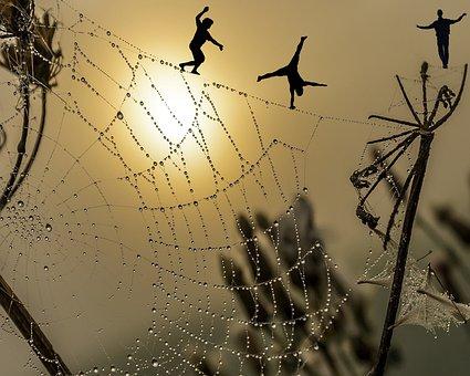 Sunset, Men, Tightrope Walkers, Cobweb, Sun, Sky
