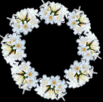 Easter Lilies, Flowers, White, Belladonna, Wreath