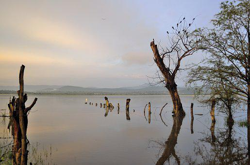 Dawn, Water, Laguna, Landscape, Peace