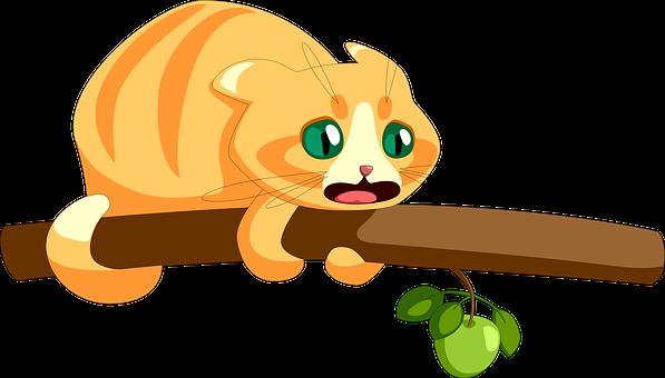 Cat, Redhead, Branch, Tree, Fear, Animal