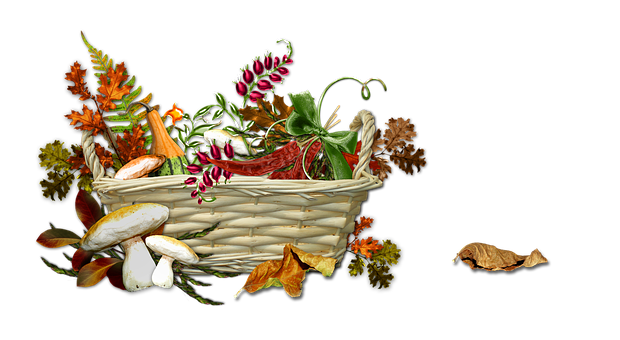 Autumn, Harvest, Season, Ripe, Nature, Basket