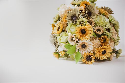 Daisy, Paper Flower, Flowers, Floral, Petals, Daisies