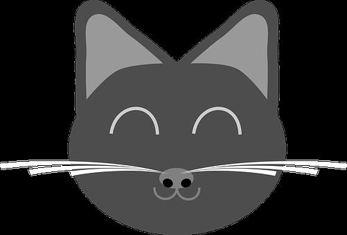 Cat, Kitten, Kitty, Animal, Domestic Cat