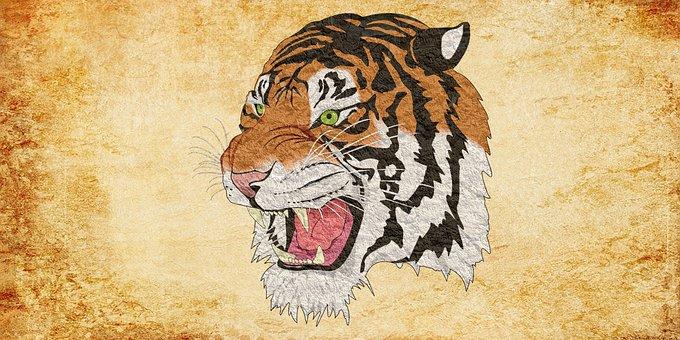 Tiger, Cheetah, Lion, Animal, Vintage, Jaguar, Leopard