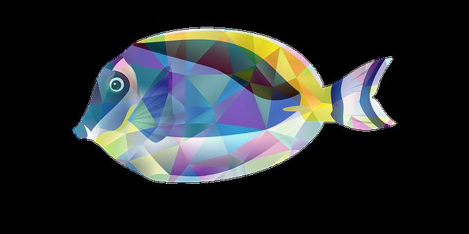 Fish, Fishing, Types Of Fishing, Fishing Cartoon