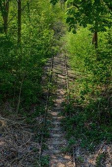 Rail, Track, Vegetation, Trees, Nature, Break Up