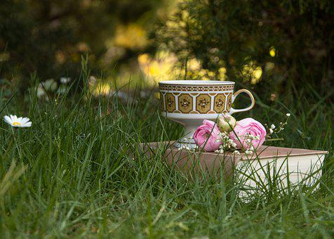 We Stay At Home, Home, Meadow, Garden, Book, Cup