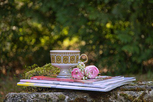 We Stay At Home, Home, Meadow, Garden, Magazines, Cup