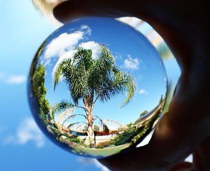 Glass Ball, Refraction, Palm Tree, Sky