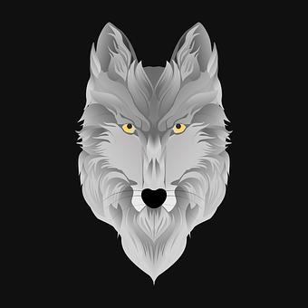 Wolf, Animal, Predator, Nature, Carnivores, Mammal