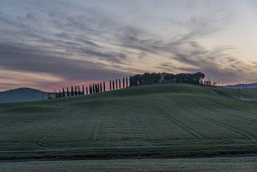 Vineyard, Home, Business, Wine, Italy, Farm, Rural, Sky