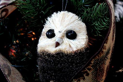 Toy, Gift, Decoration, Celebration, Festive, Seasonal