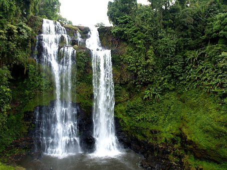 Waterfall, Falls, Cascades, Natural, Forest, Scenic