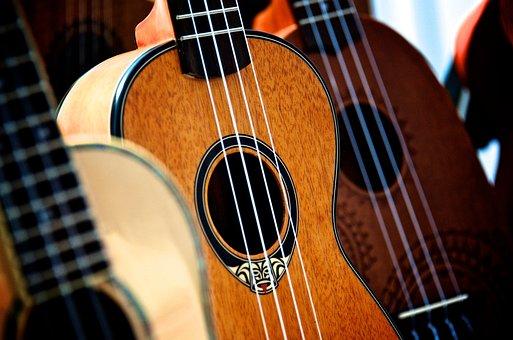 Music, Instrument, Musical, Acoustic, String, Hawaiian
