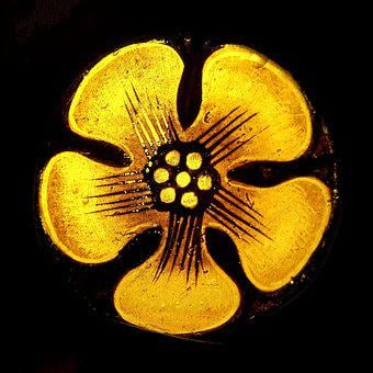 Stained, Glass, Stained Glass, Flower, Yellow, Detail