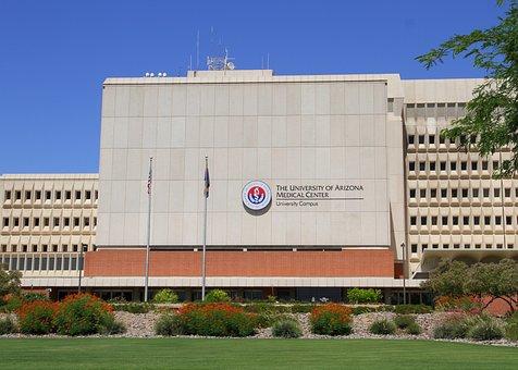 University Of Arizona, Uofa, University, Arizona
