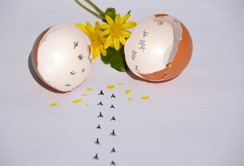 Easter, Egg, Easter Theme, Chicks