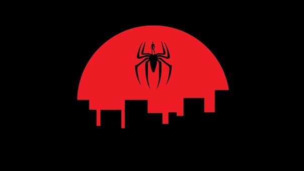 Spider Man, Spider, Insect, Design, Man