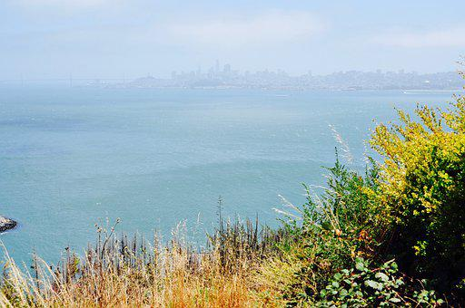 San Francisco, Usa, America, Travel, Landmark, Bay