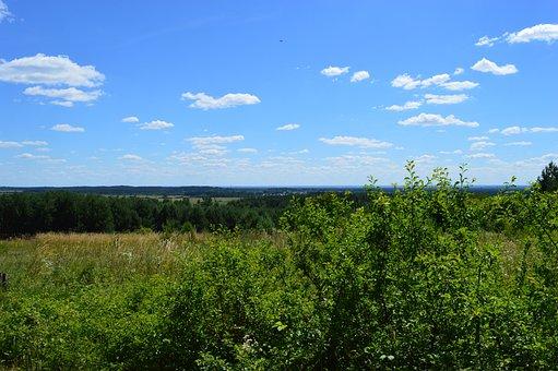Mite, Landscape, Nature, Poland, Summer