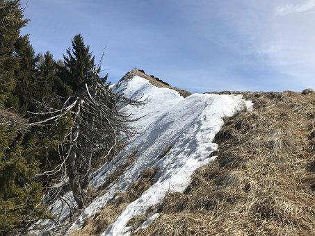 Monte Boglia, Alpine Route, Alps, Alpine, Adventure