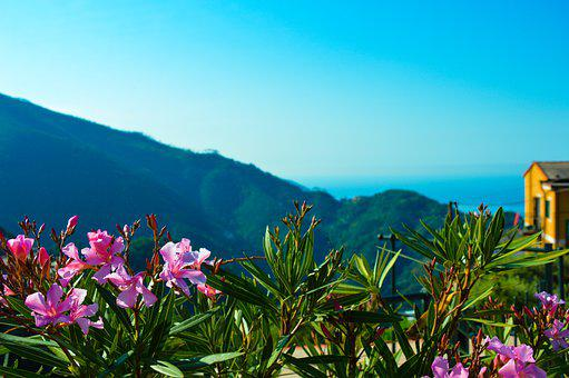 Italy, Liguria, Vernazza, Flowers, Sea, Mountains, Sky