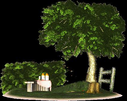 Scenic, Picnic Park Design, 3d Render, Summer