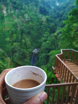 Coffee, Nature, Picnic, Camping, Adventure, Ba, Outdoor