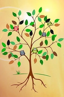 Tree, Root, Aesthetic, Leaves, Owls, Sun, Outlines
