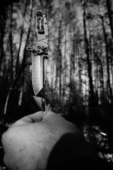 The Dark, Priíoda, Sad, Nature, Weather, Tree, Forest
