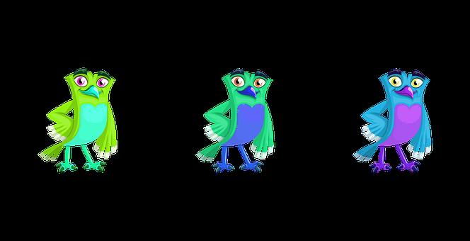 Bird, Parrot, Animal, 2020, Birthday, Rose, Feather