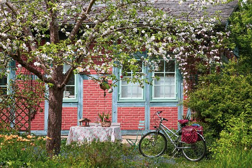 Unewatt, Museum Village, Apple Blossoms, Ambience, Bike